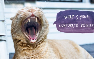 How to find the Right Corporate Voice for your Video Campaign